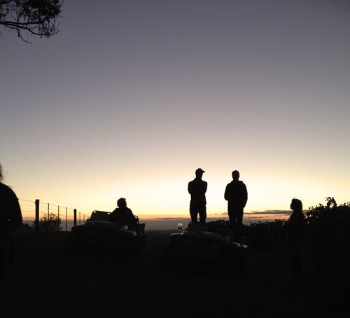 best vineyards in yarra valley