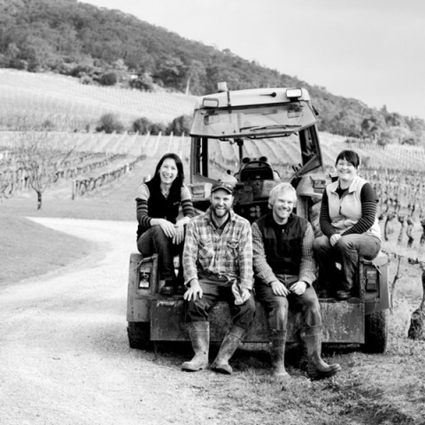 yarra-yering-winemaking-and-viticulture-01