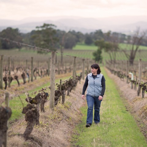 yarra-yering-winemaking-and-viticulture-07
