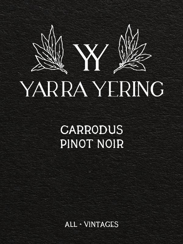 Yarra Yering Carrodus Pinot Noir